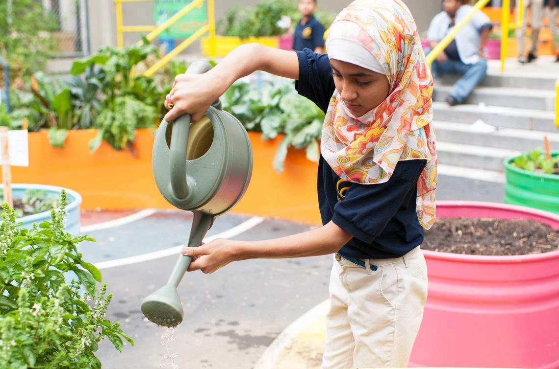 EdibleSchoolyard-thumb